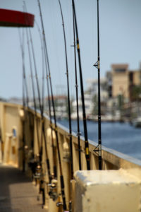 The best fishing rod brands are here the fishing way for Good fishing pole brands